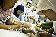 Baby with dengue